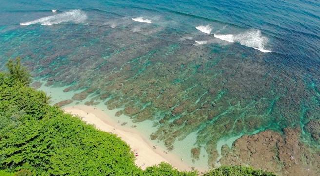 Hideaways Beach Drone Shot
